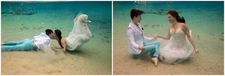 Orlando underwater photographer